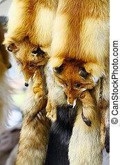 Fox Fur - Fox fur collar sold in shop