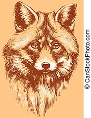 Fox head illustration