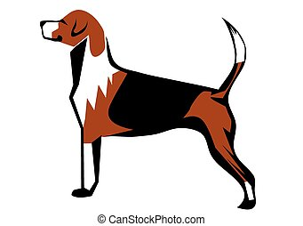 fox hound isolated on a white background