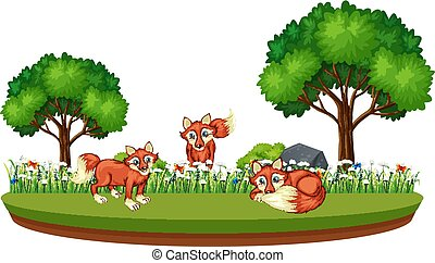 Fox in nature landscape