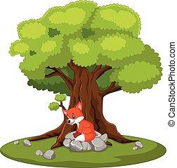 fox sitting on the stone