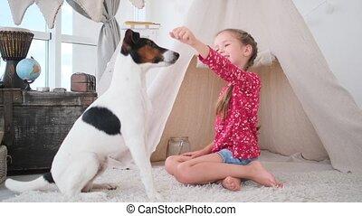 Fox terrier dog asking for food hidden in little girl's hand indoors