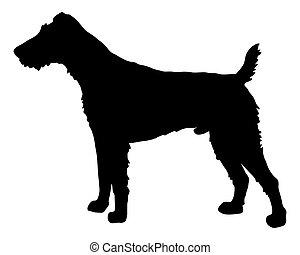 fox terrier, silhouette, nero
