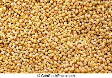 foxtail millet - Cooking ingredient series foxtail millet....