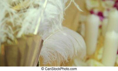 foyer, pétale, plumes, changement, dynamique, bougies