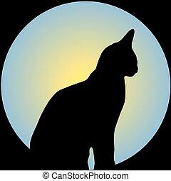 främre del, katt, måne