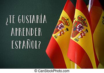 fråga, göra, dig, vilja, till lär, spansk, in, spansk