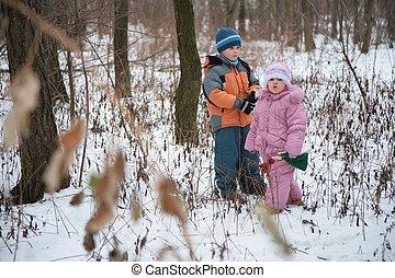 frère, à, soeur, dans, forêt, dans, hiver
