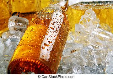 frío, botellas, ice., cerveza, acostado