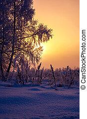 frío, tibio, invierno, salida del sol