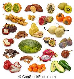 früchte, sammlung