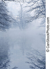 früh, beutiful, mornig, winter, tag