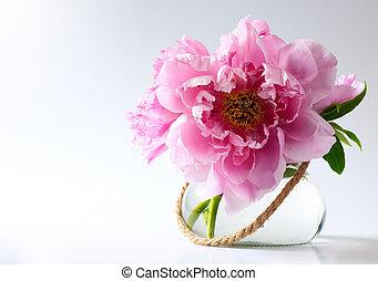 frühjahrsblumen, in, blumenvase, weiß, hintergrund