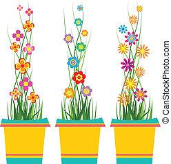 frühjahrsblumen, in, töpfe