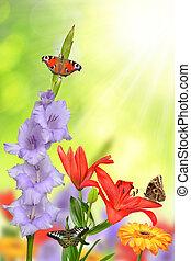 frühjahrsblumen, mit, vlinders