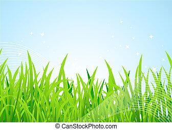 frühlingswiese, schöne