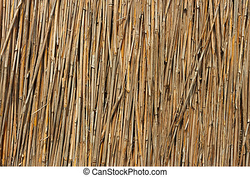 Fragment of reed fence