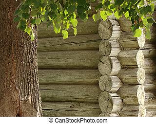 fragmento, casa, madeira