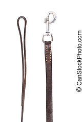 Fragments of the dog leash isolated over the white background