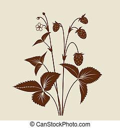 fragola, arbusto, silhouette, isolato