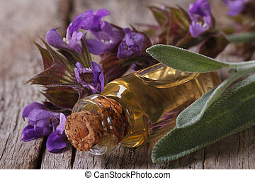 fragrant sage oil in a glass bottle on the table macro. ...