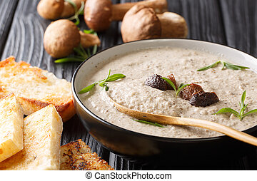 Fragrant soup with fresh porcini mushrooms and thyme close-up in a bowl served with toast. horizontal