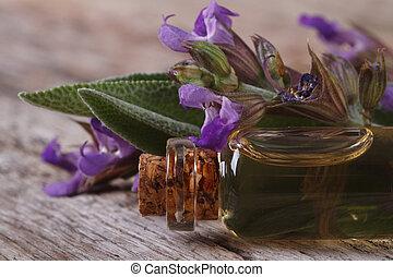 fragrante, olio, saggio, macro., bottiglia vetro,...