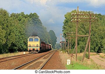 fragt tog, forbigående, den, skov