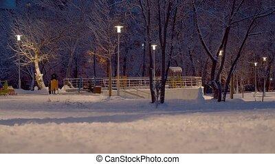 frais, après, neige, marche, gens, parc, chute neige