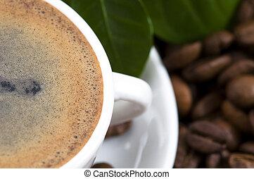 frais, café, branche