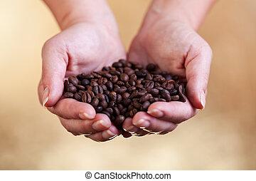 frais, café, poignée, rôti