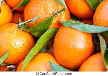 frais, clémentines, mandarines, fond, ou