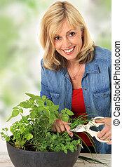 frais, femme, découpage, herbs.