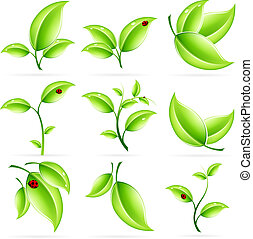 frais, feuilles, ensemble, vert, icône