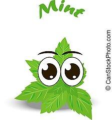 frais, feuilles, menthe