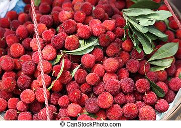 frais, lychee, à, feuilles