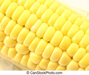 frais, maïs, haut fin