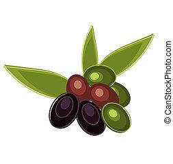 frais, olives