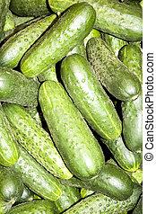 frais, organique, concombres