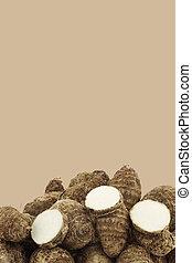 frais, taro, roots(colocasia)