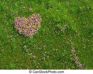 frais, valentin, coeur, fait, fleurs