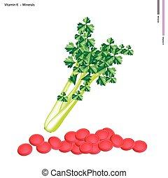 frais, vert, céleri, à, k vitamine, et, minéraux