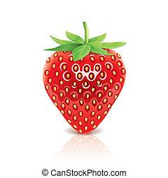 fraise, blanc, vecteur, isolé