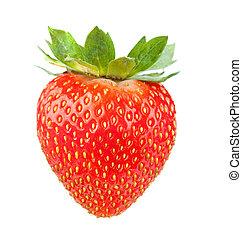 fraise fraîche