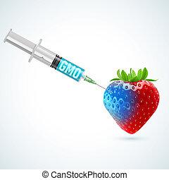 fraise, gmo