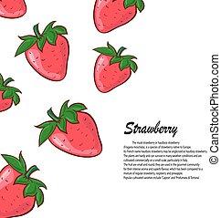fraise, illustration, arrière-plan., vecteur, blanc, baies