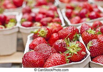 fraise