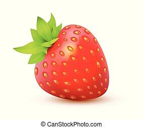 fraise, -, juteux, illustration, isolé, réaliste, unique, vecteur, berry., icône