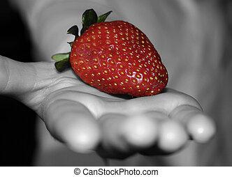 fraise, main