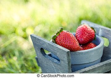 fraises, dans, herbe
